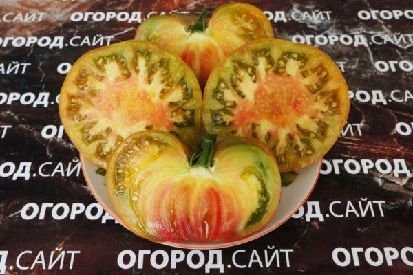 томаты от коллекционеров на 2019 год