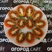 сорт томата шоколадный зайчик