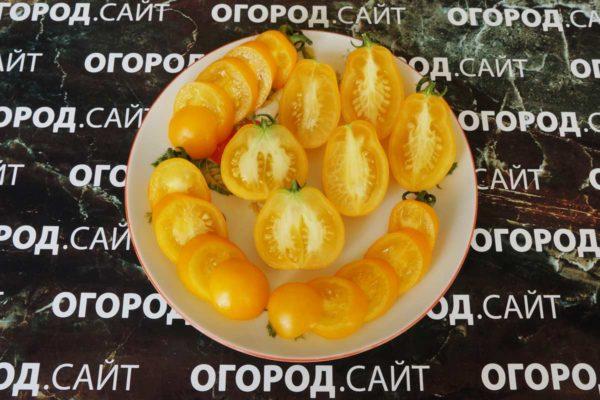 чешский томат тайко