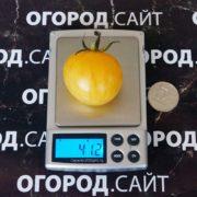 Томат Вернисаж желтый