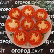 омат яблонька россии характеристика