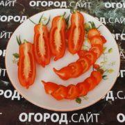 купить семена томатов фляшен