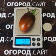 Томат Атомный виноград Бреда