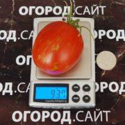 pomidor-pashalnoe-yaytso-2