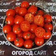 Томат Черри красные минусинские
