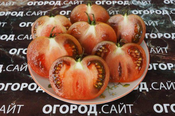 томат красавица колледжа купить