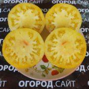 сорт томата король сибири фото