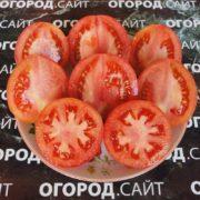 свои семена томатов