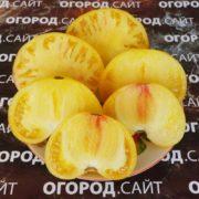 Томат Большой лимонный оксхарт