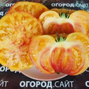 Томат Королевский ананас