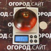 Томат Красный уголь