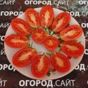 pomidor-rozovy-izyum-2