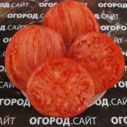 Подсиневские сердца (минусинские)