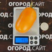 Фляшен оранжевый