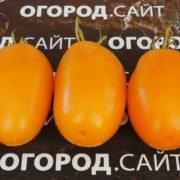 Фляшен оранжевый с носиком, с углублением и с носиком в углублении